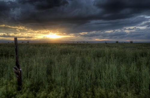 sunset shadow storm field clouds fence wheat horizon prairie agriculture