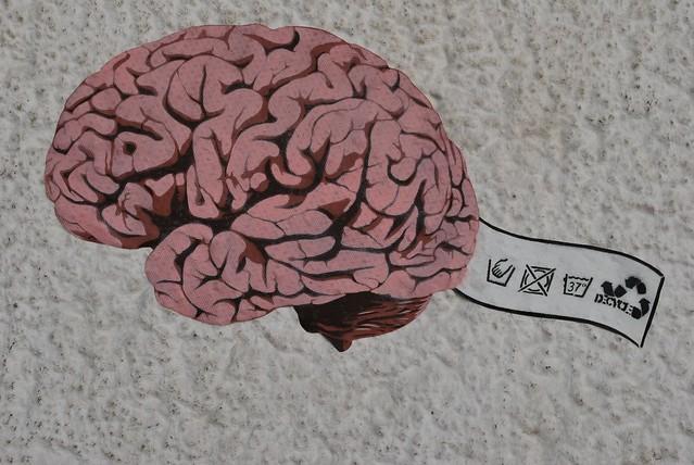Das Hirn