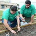 Students work to plant seeds in the newly constructed community garden on campus.