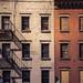 Facade Study (NY) by Wayne Grivell