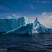 Iceberg by Adam Woodworth