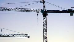 DC Dance of the Cranes 59101