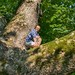Kael in the Pinchot Sycamore by Pixelsprite