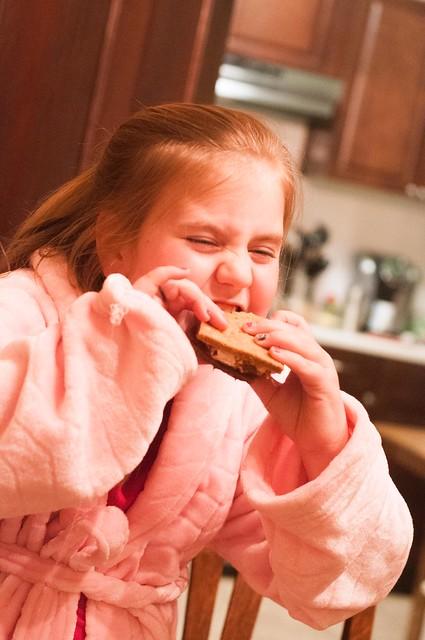january 28. 29. graham crackers. marshmallows. lemon pound cake_0023_edited-1