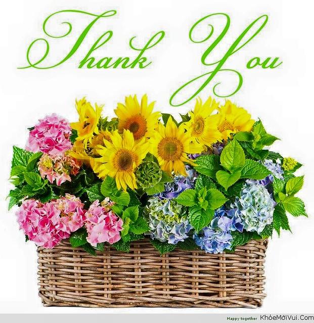 Lời cám ơn 2