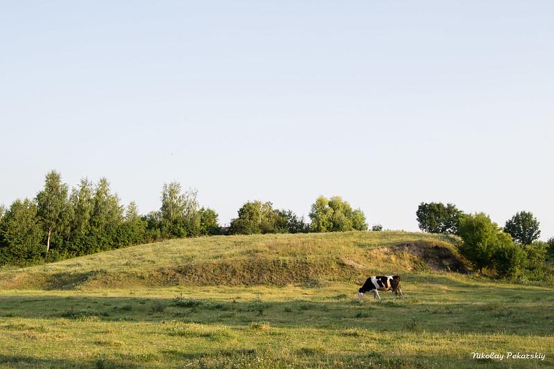 На этом холме находилось старое еврейское кладбище