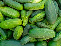 vegetable, produce, food, gherkin, cucumber, gourd,