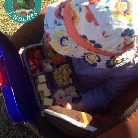 Loving Honey's #yumbox grazing plate for our outing to the school athletics carnival today… @minihippoau @yumbox
