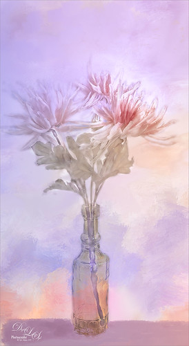 Still Life Image of flowers in a vase