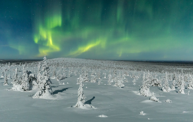 Riisitunturi Northern Lights