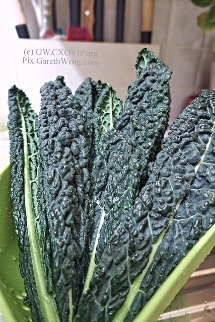 Lacinato kale (cavolo nero), not sure if you like this from RAW via CaptureOne _DSC2580