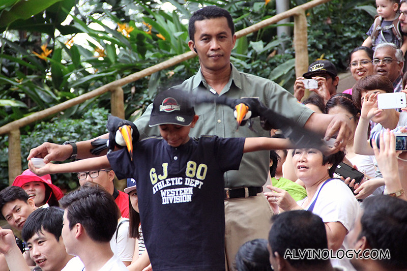A boy volunteer with birds on his shoulders