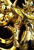 Aiolia - [Imagens] Aiolia de Leão Soul of Gold 19001695250_f27a69c8e9_t