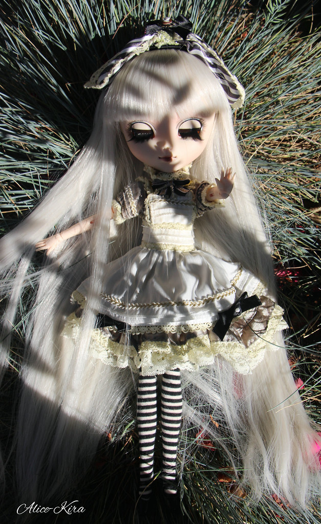 Alice, Pullip Classical Alice Sepia ♥ (News Page 3 !) 19529119436_dcb3d8be11_b