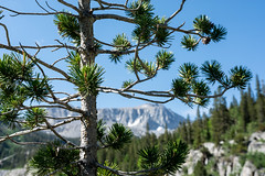 California's Eastern Sierra