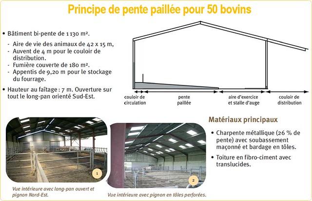 principe-pente-paillée-2