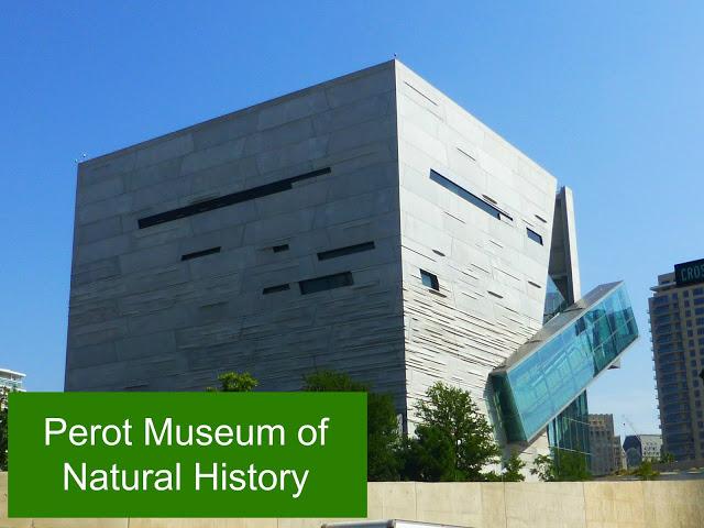 Perot Museum 26