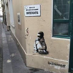 Art Against Poverty, in Paris