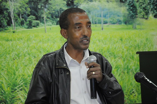 Solomon Abegaz (EIAR), co-principal investigator of ACGG in Ethiopia (photo credit: EIAR/Semunigus Yemane)