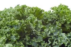 Nutritious Wet Kale