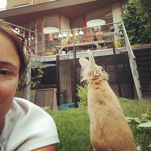 Selfie met keun 🐰 #konijn