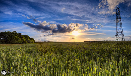 blue sunset sky plants cloud sun green beautiful canon landscape photography spring colours silent eagle outdoor farm awesome north east cables lee sep filters northeast sunderland tynewear copyright© silenteaglephotography silenteagle09