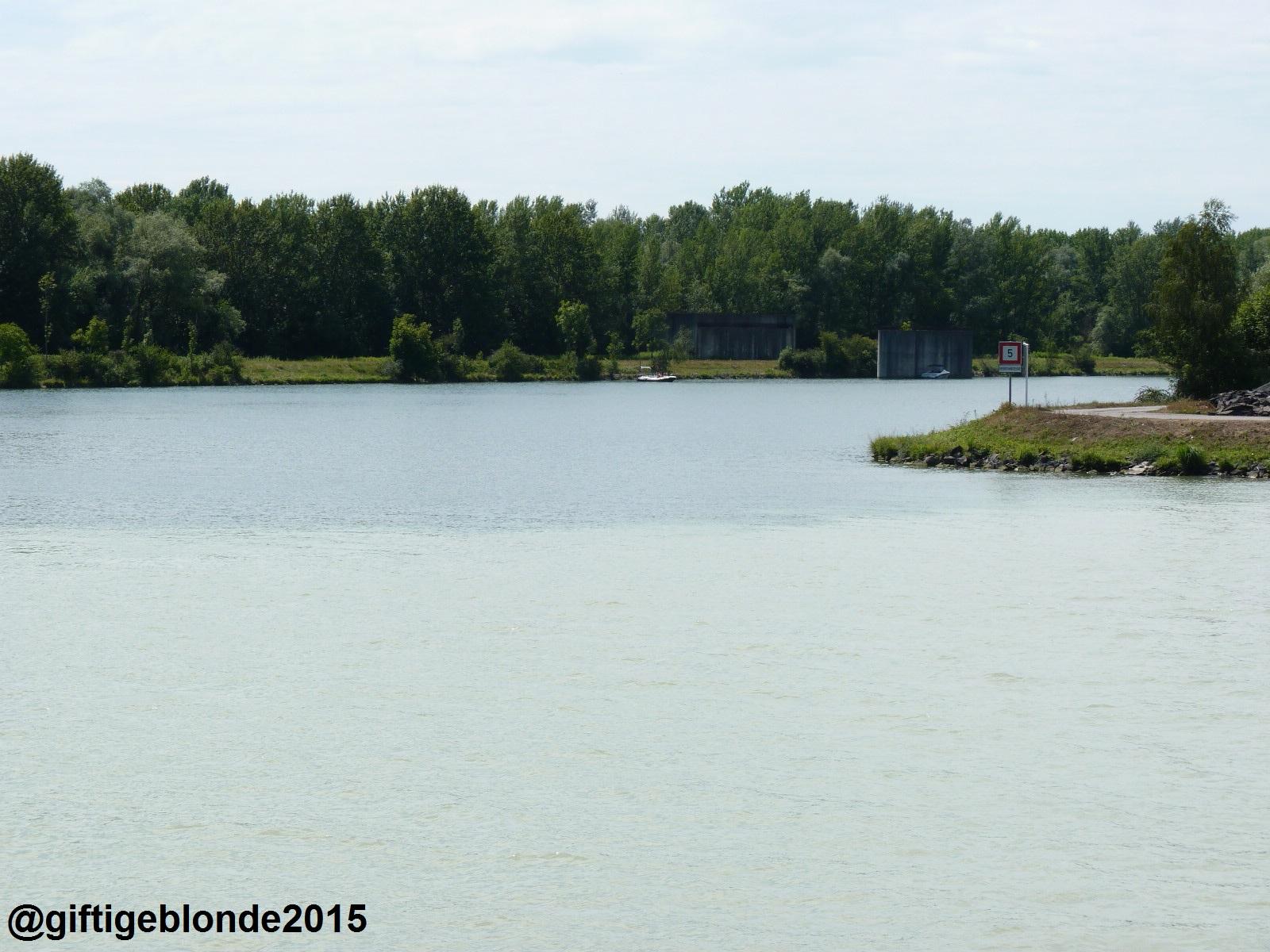 Donau trifft Traun