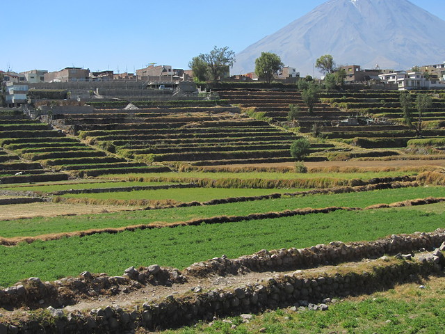 Ancient Terraces on the outskirts of town