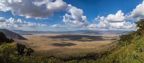 ngorongoro crater africa tanzania arun sundar arusharegion tz landscape green trees forest wildlife