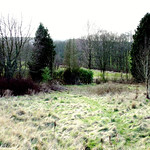 dykebar garden