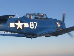 aviation, military aircraft, airplane, propeller driven aircraft, vehicle, north american t-28 trojan, air racing, north american t-6 texan, grumman f8f bearcat, douglas sbd dauntless, air force, republic p-47 thunderbolt,