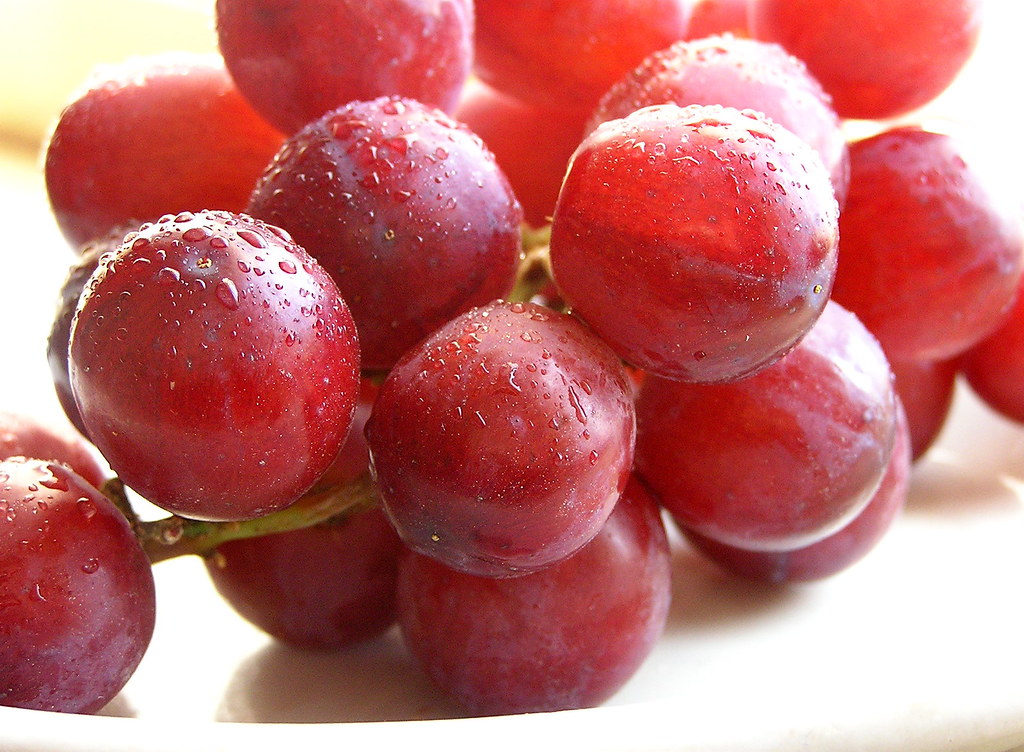 grapes red or green, European type, such as Thompson seedless, raw