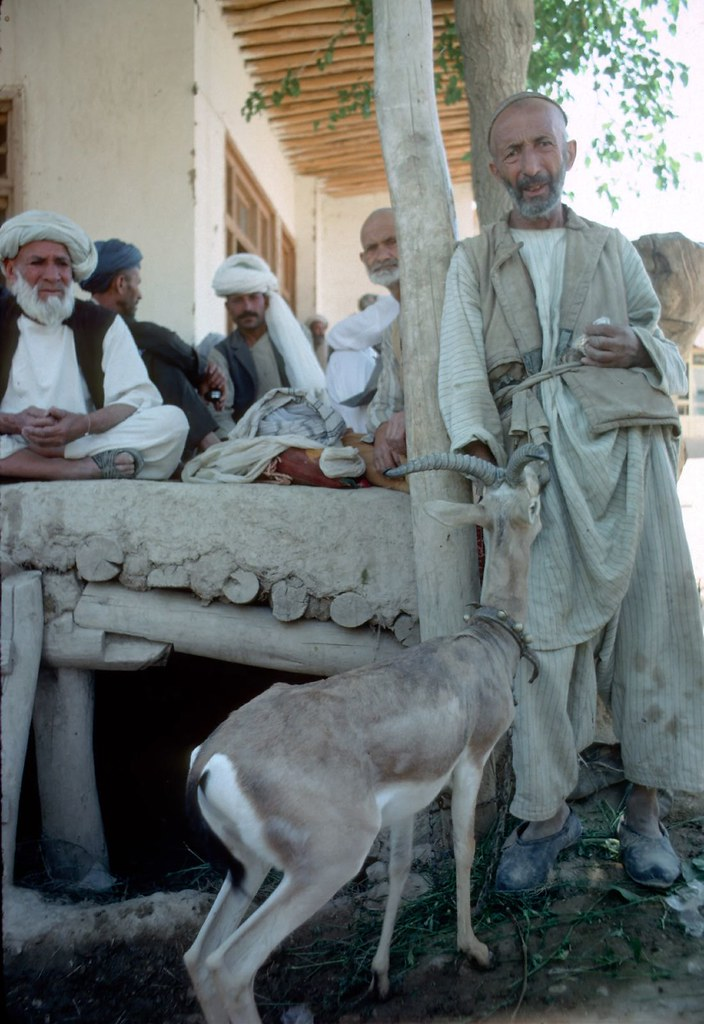 Men and goat at Afghan chai khana | What made the travel eas… | Flickr