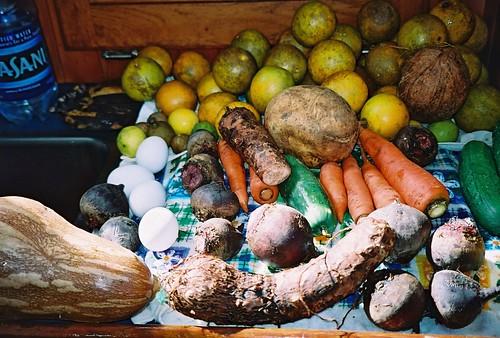 Home from the vegetable market in Cuba Havana