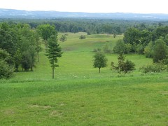 Saratoga Battlefield, Saratoga National Historical Park, Stillwater, New York