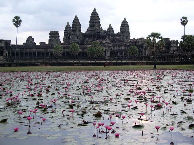 Homo Architectus blog arquitectura arte Angkor Camboya ciudad sagrada ruinas Wat