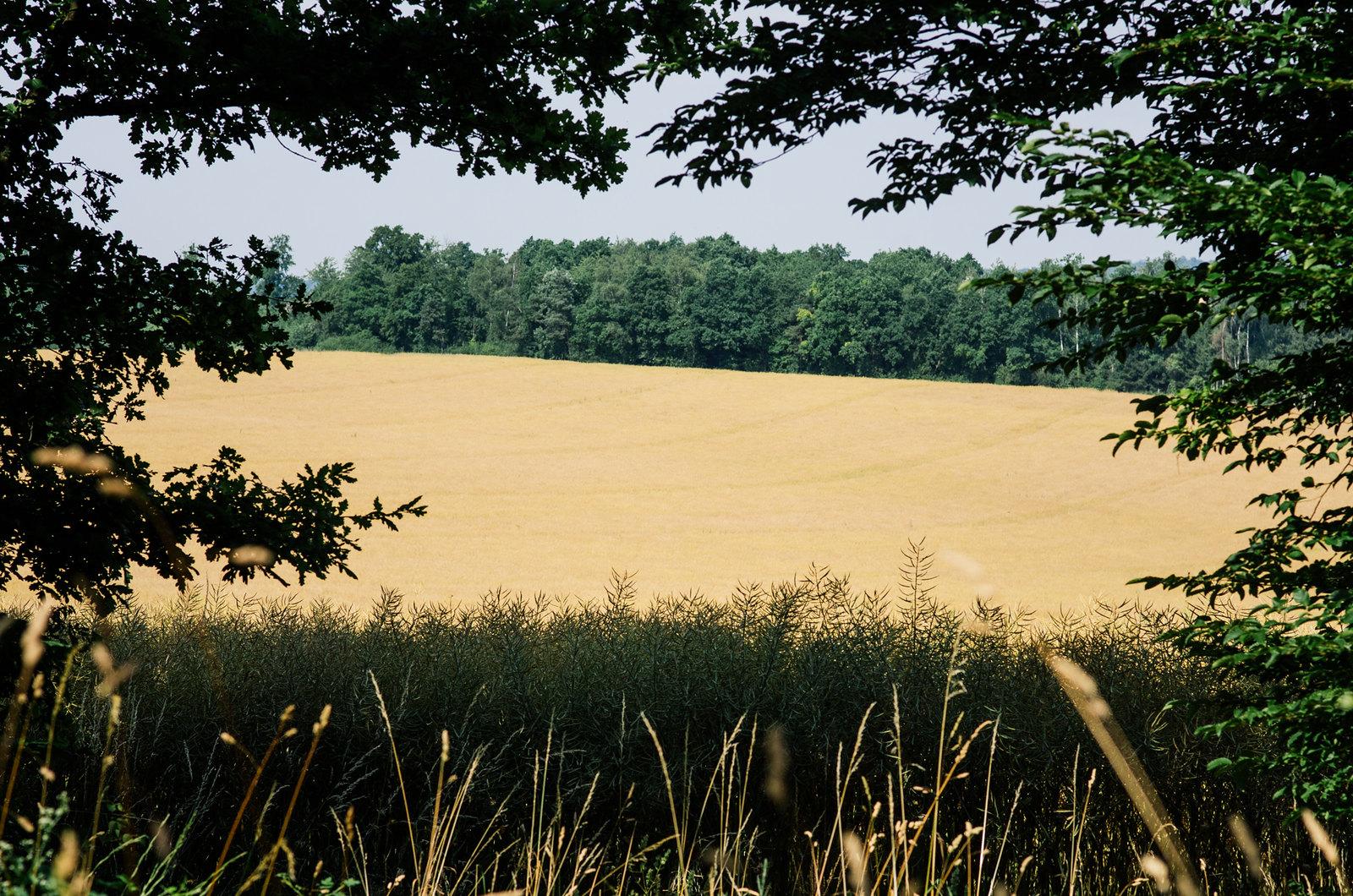 Tourisme rural dans la Meuse - Canicule, confiture et agriculture