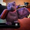 Bat on a hot laptop