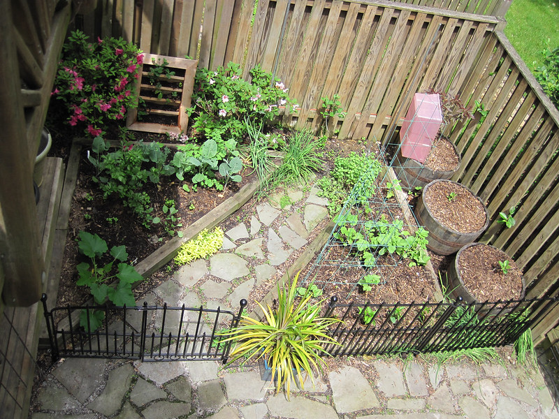 Garden Left, Early Spring. Two triangular beds with a stone path between, young plants, azaleas and whiskey barrel pots on the perimeter