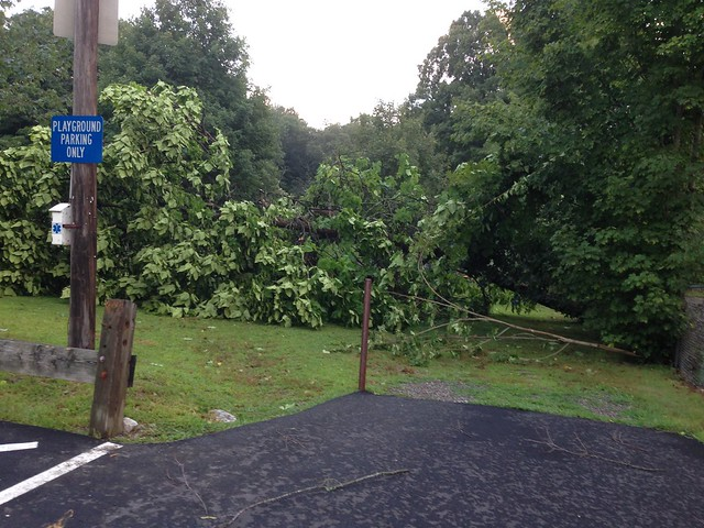 August 4. 2015 storm and dessert