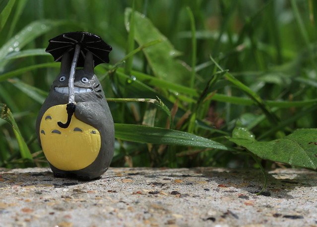 Photo:Totoro (My Neighbor Totoro)(Studio Ghibli) By:Kyla Duhamel