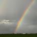 Denge Marsh Rainbow