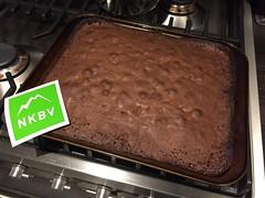 NKBV-Brownie.JPG