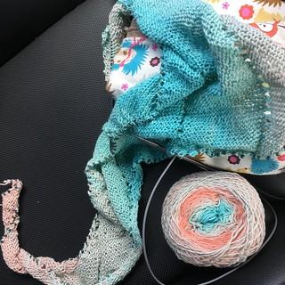 Knitting WIPs ~ 1/25/17