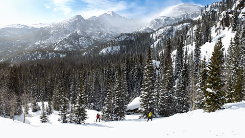 colorado rockies national park nature winter mountains trees snow landscape