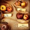 Ditelo con un frutto: Rosa, mela dai?