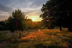 Coucher de soleil #5 - Photo of Clermont-d'Excideuil