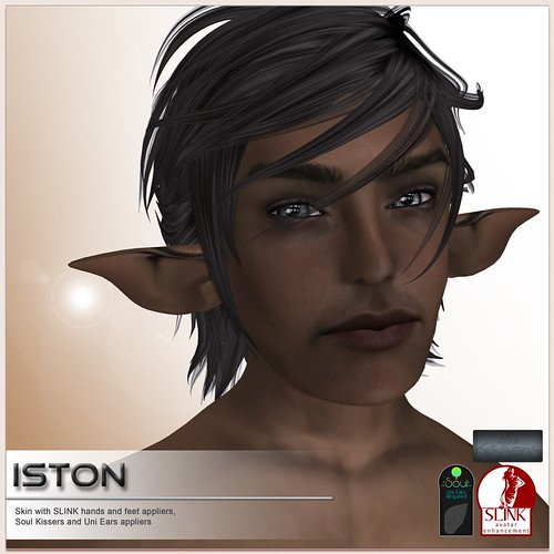 [DBF] Iston skin - group gift August