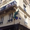 Only in France can you find a neon salamander climbing the walls / Angers / #barlife #angers #loire #france #neon