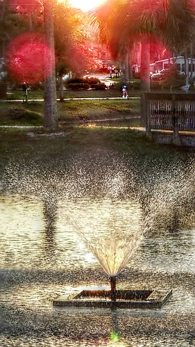 sunsetbokehtropical reedcanalpark southdaytonafl sunset sunlight bokeh redorbs waterspray fountain lake park scenic palmtrees people